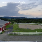 15 stall barn for rent