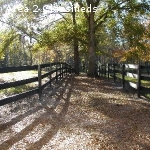 Aiken, SC Stalls with Turn-out and RV/Trailer Hook-up Availa