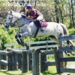 Eventing Instructor