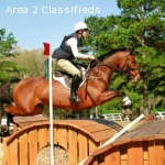 Train with upper level rider Nora Battig