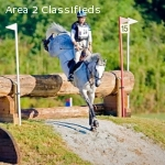 Working Student Needed for Lisa Barry Equestrian!