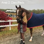 Full Time Groom/Rider for 3 months Aiken SC