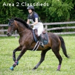 Honest Eventer Ready to Compete