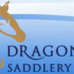Saddle Fitting Advice at Dragonfly Saddlery uk