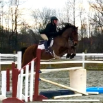 Talented Young Rider Prospect